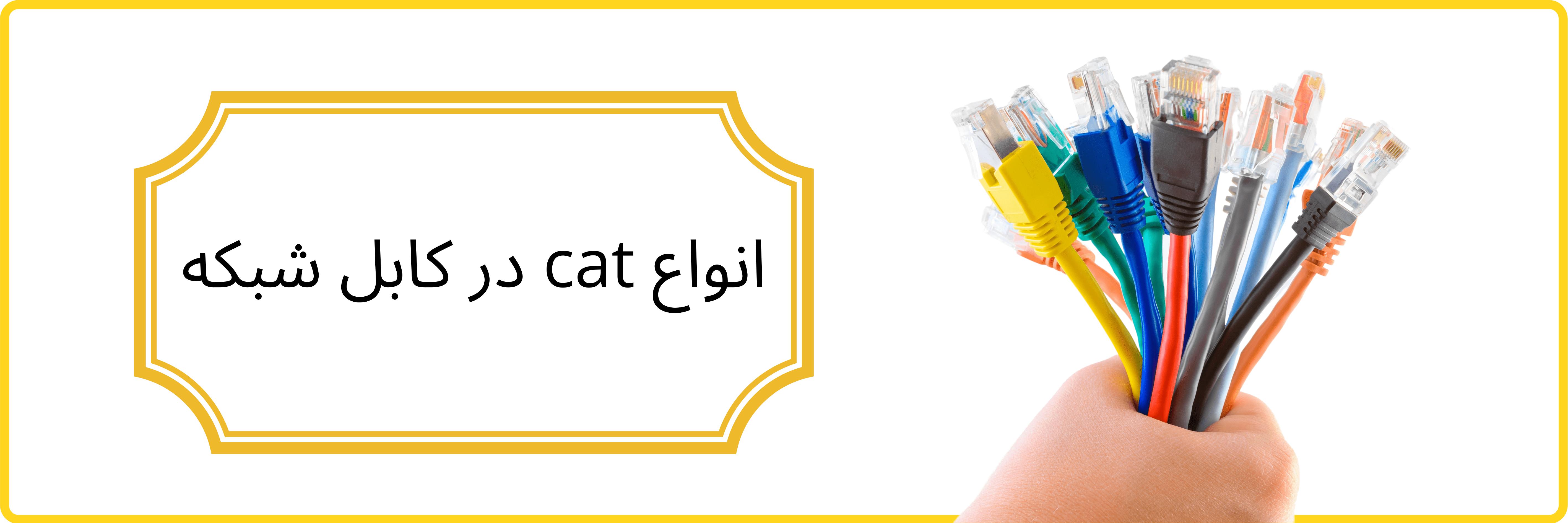 cat در کابل شبکه